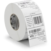 Zebra Z-Perform 2000T Paper Label (10005853)