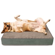 Green Living Dog Beds Dog Bed w/ Lux Cover; Extra Large (40'' L x 33'' W)