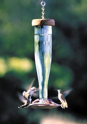 Schrodt Lantern Hummingbird Feeder; Crystal