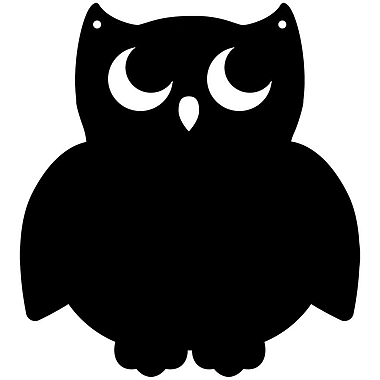 Magnetize Your Style Owl Magnetic Chalkboard