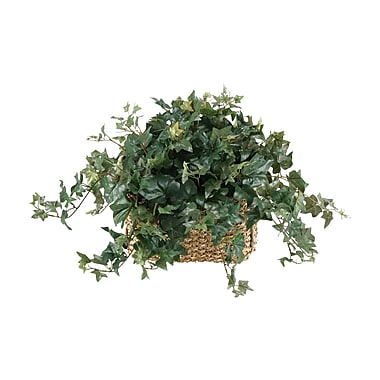 D & W Silks English Ivy Rectangle Centerpieces in Planter
