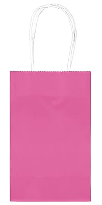 Amscan Cub Bags Value Pack, 4/Pack, Bright Pink, 10 Per Pack (162500.103)