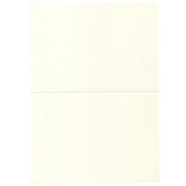JAM Paper® Blank Foldover Cards, A7 size, 5 x 7, Natural, 100/Pack (530913129)