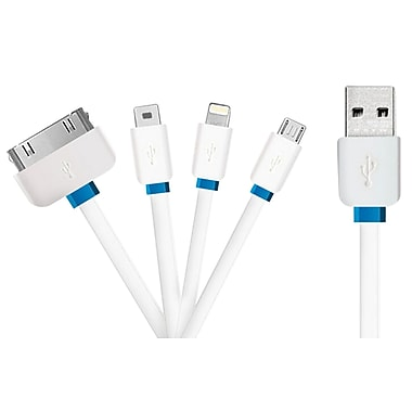Exian4 in 1 Lightning/Micro USB/30PIN/Mini USB Cable, White