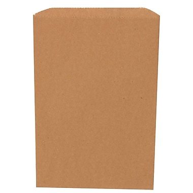 JAM Paper® Merchandise Bags, Small, 6.25 x 9.25, Brown Kraft Recycled, 1000/Pack (342126846)