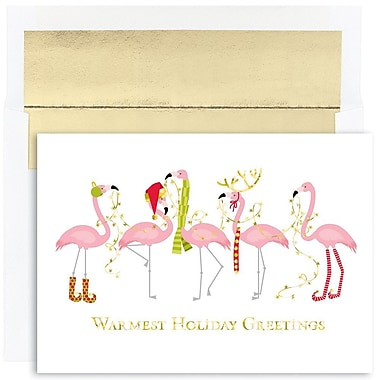 JAM Paper® Christmas Holiday Cards Set, Fashion Flamingo Warm Wishes, 18/Pack (526816300g)