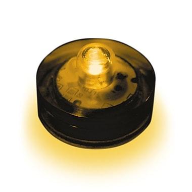 Luminarias Submersible Lights (Set of 12); Amber