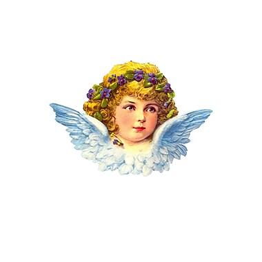 Alexander Taron Standing Blue Angel Card