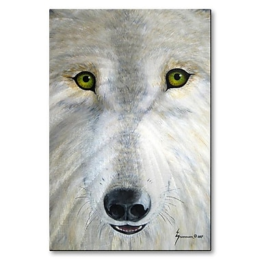 All My Walls 'White Wolf Face' by Jerome Stumphauzer Painting Print Plaque