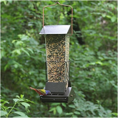 Perky Pet Fortress Squirrel Proof Hopper Bird Feeder (WYF078276316936) photo