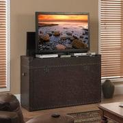 Touchstone Ellis Trunk 54'' TV Stand