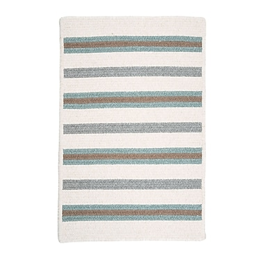 Colonial Mills Allure Area Outdoor Rug; Rectangle 2' x 4'