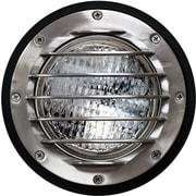 Dabmar Lighting 1-Light Well Light; Stainless Steel