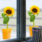 Platin Art Looking for Sun Window Sticker