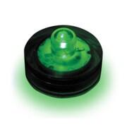 Luminarias Submersible Lights (Set of 12); Green