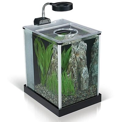 Hagen Fluval 2 Gallon Aquarium Kit