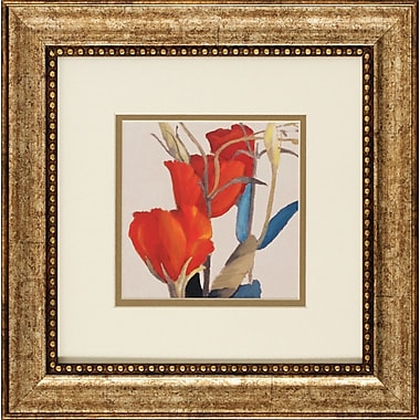 Propac Images Grandiflorum I / II 2 Piece Framed Graphic Art Set