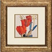Propac Images Grandiflorum I / II 2 Piece Framed Graphic Art Set