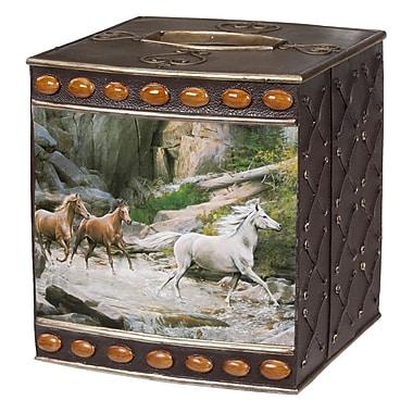 Creative Bath Horse Canyon Tissue Box Cover