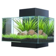 Hagen 6 Gallon Fluval Edge Aquarium Kit; Black