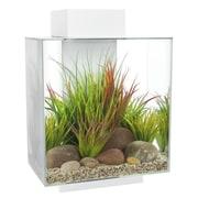 Hagen 12 Gallon Fluval Edge Aquarium Kit; White