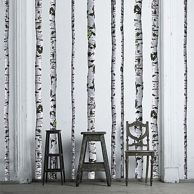 Walls Need Love Super Real Birch Wall Decal