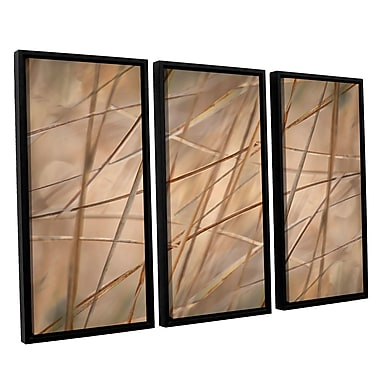 ArtWall 'Deschampsia' by Cora Niele 3 Piece Framed Photographic Print on Canvas Set