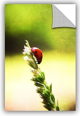 ArtWall 'Ladybug Descent' by Dragos Dumitrascu Photographic Print; 36'' H x 24'' W x 0.1'' D