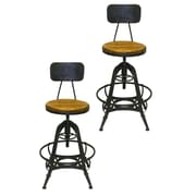 Pangea Home Bruce Adjustable Height Swivel Bar Stool (Set of 2); Amber