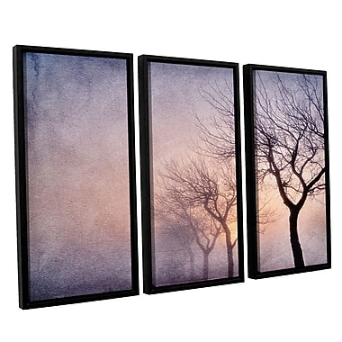 ArtWall 'Early Morning' by Cora Niele 3 Piece Framed Photographic Print on Wrapped Canvas Set