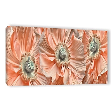 ArtWall 'Poppyscape' by Cora Niele Photographic Print on Wrapped Canvas; 12'' H x 24'' W x 2'' D