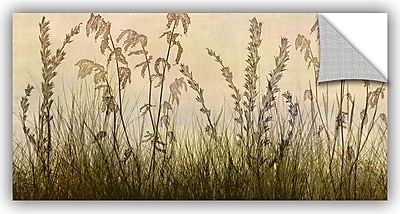 ArtWall 'Amber' by Cora Niele Photographic Print; 18'' H x 36'' W x 0.1'' D