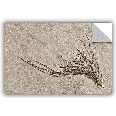 ArtWall 'Beach Find I' by Cora Niele Graphic Art on Canvas; 32'' H x 48'' W x 0.1'' D