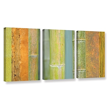 ArtWall 'Bamboo' by Cora Niele 3 Piece Graphic Art on Wrapped Canvas Set; 36'' H x 72'' W x 2'' D