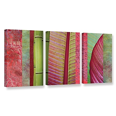ArtWall 'Red Green' by Cora Niele 3 Piece Photographic Print on Wrapped Canvas Set
