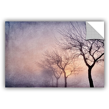ArtWall 'Early Morning' by Cora Niele Photographic Print on Canvas; 12'' H x 18'' W x 0.1'' D