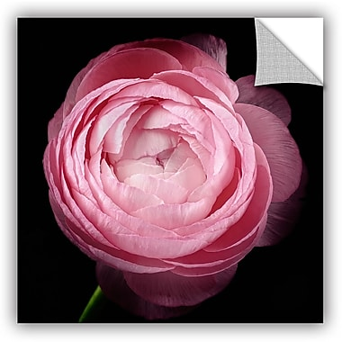 ArtWall 'Pink III' by Cora Niele Photographic Print; 14'' H x 14'' W x 0.1'' D
