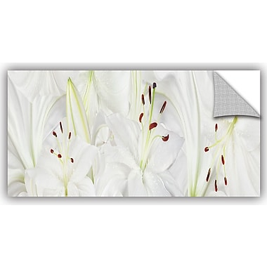 ArtWall 'Lily Landscape' by Cora Niele Graphic Art; 12'' H x 24'' W x 0.1'' D