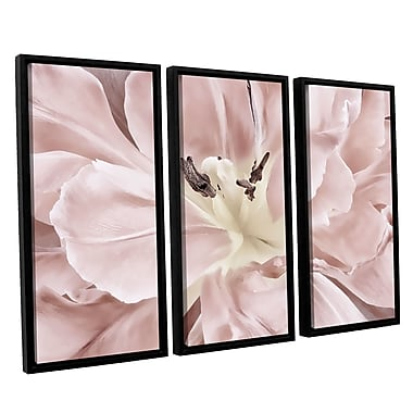 ArtWall 'Pastel' by Cora Niele 3 Piece Framed Photographic Print Set; 24'' H x 36'' W x 2'' D