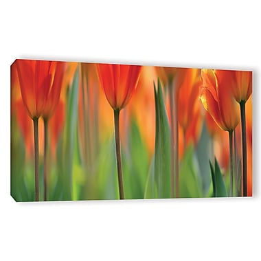 ArtWall 'Tulip' by Cora Niele Graphic Art on Wrapped Canvas; 18'' H x 36'' W x 2'' D