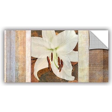 ArtWall 'Ivory' by Cora Niele Graphic Art on Canvas; 24'' H x 48'' W x 0.1'' D