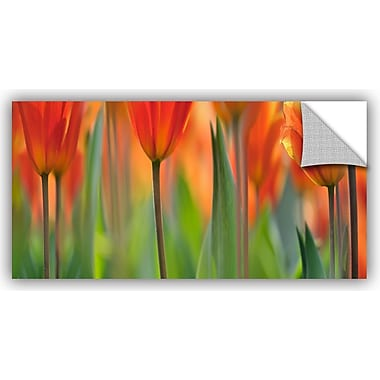 ArtWall 'Tulip' by Cora Niele Graphic Art on Canvas; 18'' H x 36'' W x 0.1'' D