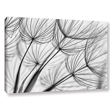 Varick Gallery 'Parachute Seed II' Graphic Art on Wrapped Canvas; 12'' H x 18'' W x 2'' D