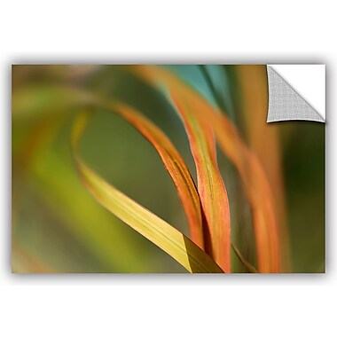 ArtWall 'Autumn Grass' by Cora Niele Photographic Print; 24'' H x 36'' W x 0.1'' D