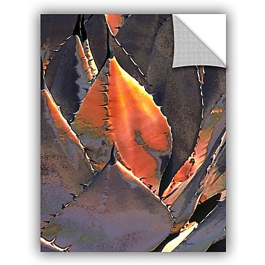 ArtWall 'Agave Sunset' by Linda Parker Photographic Print; 36'' H x 24'' W x 0.1'' D
