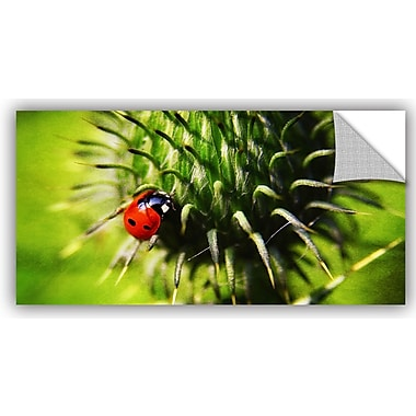 ArtWall 'Explorer' by Dragos Dumitrascu Photographic Print on Canvas; 24'' H x 48'' W x 0.1'' D