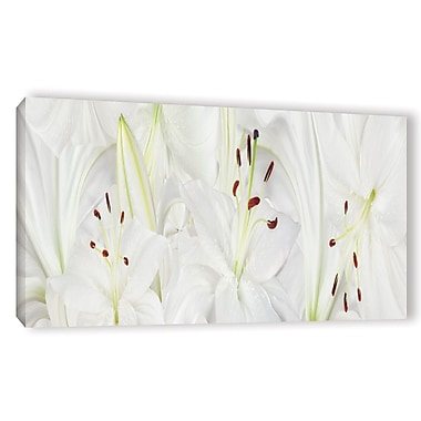 ArtWall 'Lily Landscape' by Cora Niele Photographic Print on Wrapped Canvas; 24'' H x 48'' W