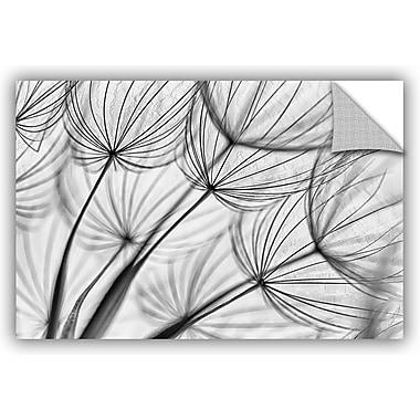 ArtWall 'Parachute Seed II' by Cora Niele Graphic Art; 16'' H x 24'' W x 0.1'' D