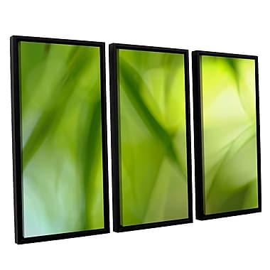 ArtWall 'Zen' by Cora Niele 3 Piece Framed Graphic Art on Canvas Set; 24'' H x 36'' W x 2'' D