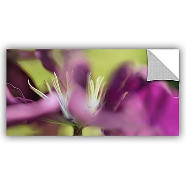 ArtWall 'Clematis Panorama' by Cora Niele Photographic Print on Canvas; 18'' H x 36'' W x 0.1'' D